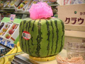 Diese Melone inspirierte zu den Bonsai-Katzen. Foto: Laughlin / Flickr / CC BY 2.0