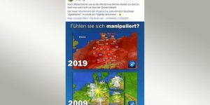 Screenshot von AfD-Tweet